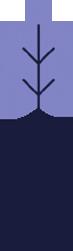 Ecommerce Web Development Australia
